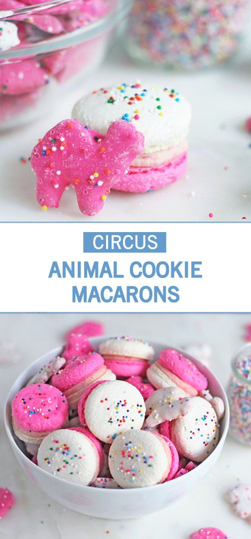 How cute are these Circus Animal Cookie Macarons? Sometimes you just need a festive treat covered in sprinkles to brighten up your dessert table! This quick and easy dessert recipe is sure to put a smile on your guests' face, not only because they're so fun, but taste great too.