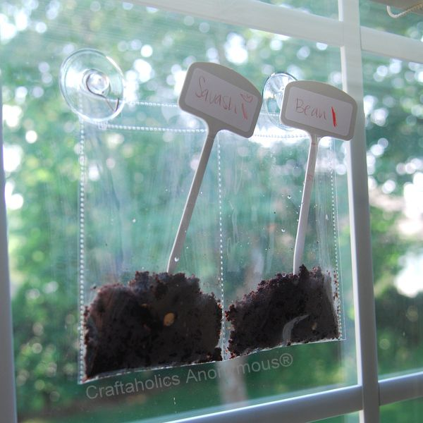 window garden craft for kids. I think you could totally diy this using one of those clear shoe organizers that they make for doors....