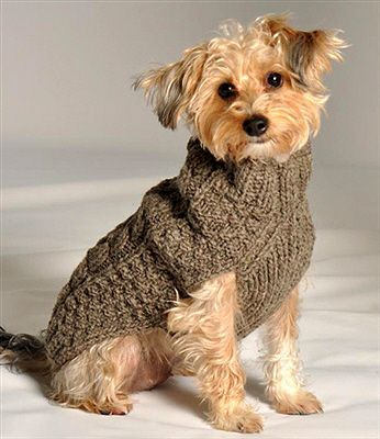 Grey Cable Knit Dog Sweaters.  How about this in Pink, then she could be black and pink!