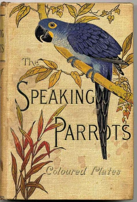 Birds: The taste of Petrol and Porcelain | Interior design, Vintage Sets and Unique Pieces www.petrolandporcelain.com  The Speaking Parrots: a scientific journal by Karl Russ, 1884