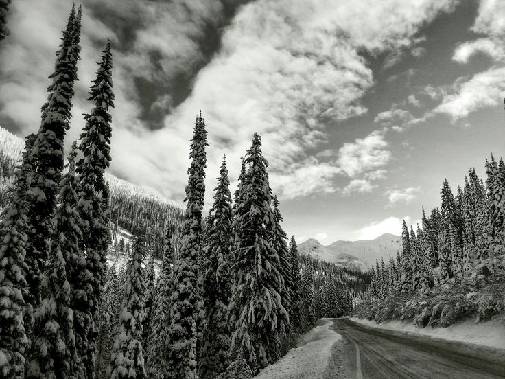 Why You Should Hit The Powder Highway for Whitewater Ski Resort: http://blog.hellobc.com/powder-skiers-love-whitewater-ski-resosrt/