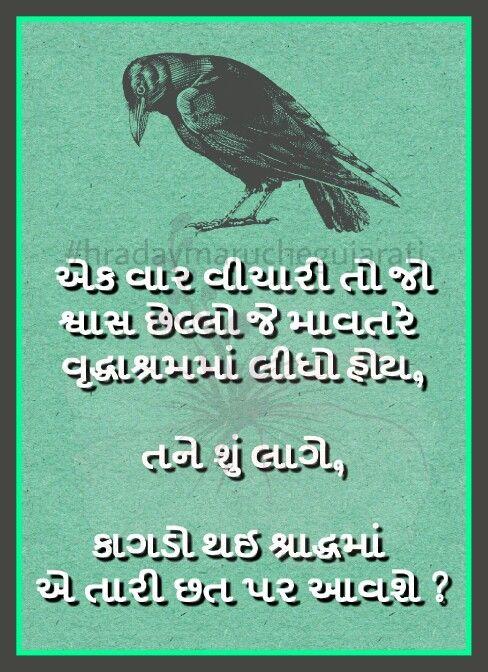 Gujarati quote   Gujrati Quote   Pinterest   Quotes