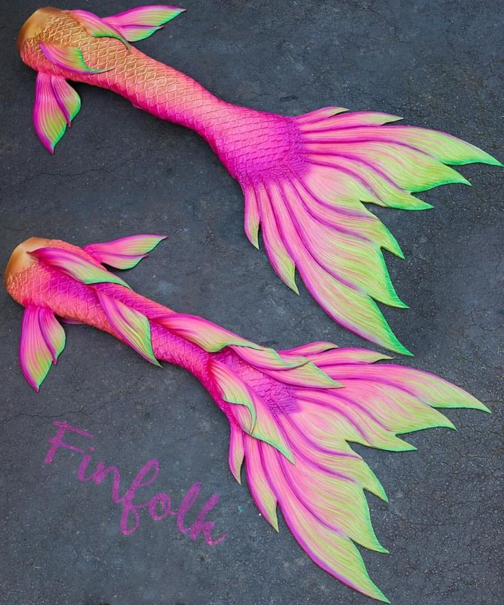 A bright pink and green custom silicone tail leaving the studio today! It reminds us of a tropical flower.  • •Follow @finfolkproductions for daily mermaid posts! • #mermaid #mermaids #mermaidtail #siliconemermaidtail #mermaidlife #mermaidvibes #tropical #summer #littlemermaid #thelittlemermaid #swim ##mermaiden #mermazing #pink #finfolk #finfolkproductions