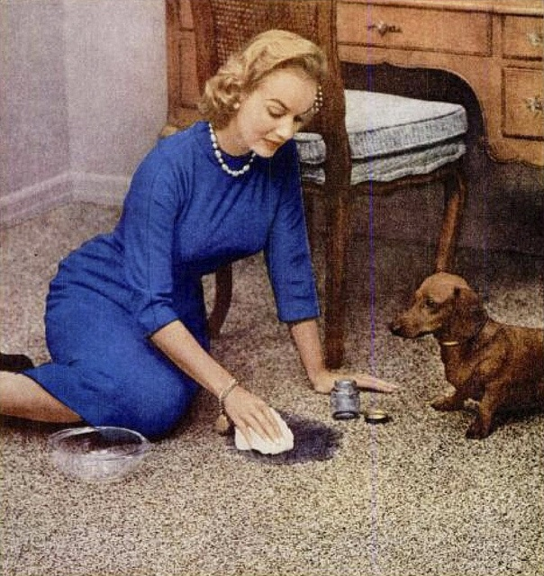 1000 Images About Vintage Bigelow Carpet Ads On