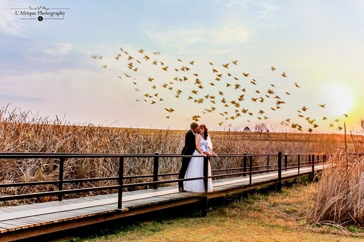 a beautiful landscape wedding photo with the birds in the background photo captured @Kloofzicht Lodge nature reserve Muldersdrift