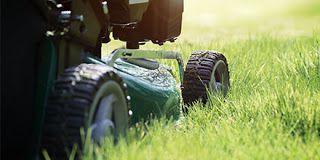 Piticul de Grădină: Cum se tunde gazonul, corect