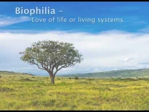 Beyond Green - Towards Restorative Biophilic Design - YouTube