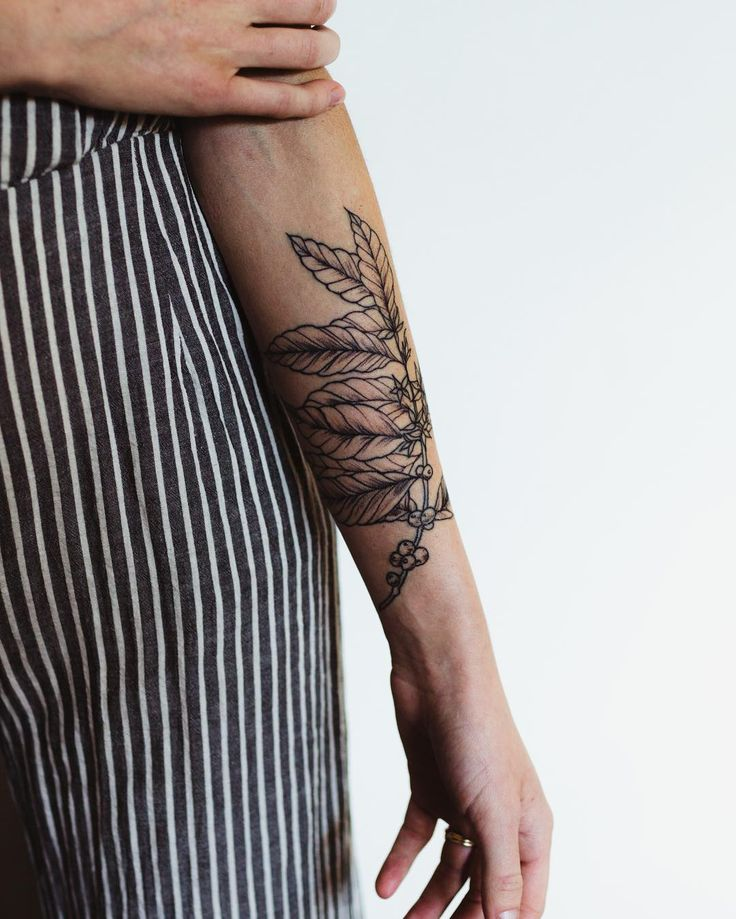 Coffee tattoo on forearm//barista tattoo//coffee arabica//coffee plant art