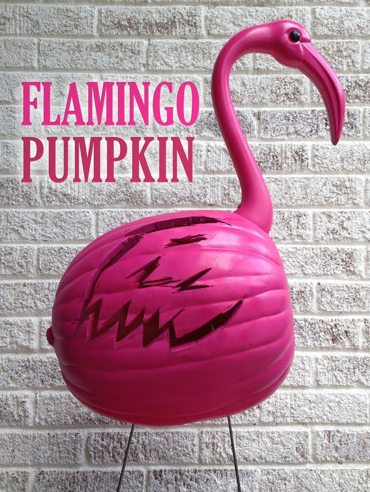 Pink Flamingo Pumpkin + A Rockwell SoniCrafter Giveaway http://paperandfox.com/pink-flamingo-pumpkin/