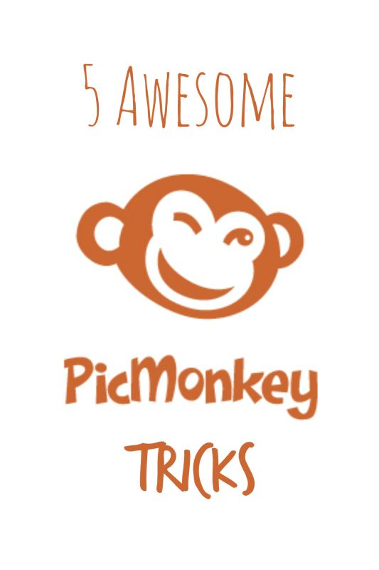 Here are some tips and tricks I've learned using Picmonkey that every blogger should know.
