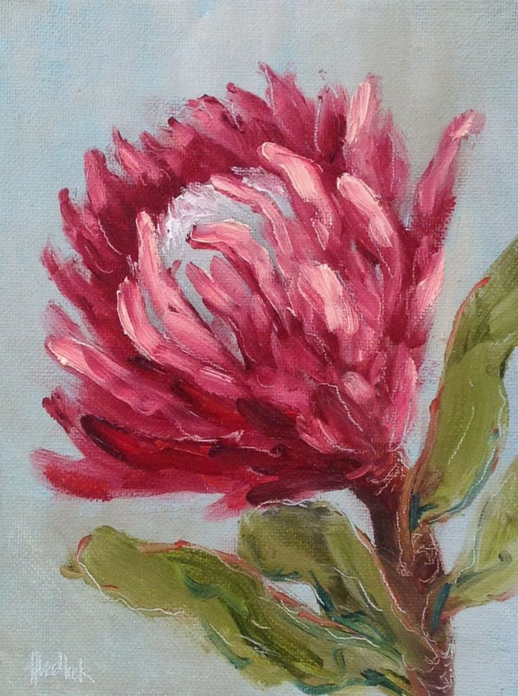"""""""Weekend protea #412"""" daily painting by Heidi Shedlock. Visit the blog and follow links to the online store"""