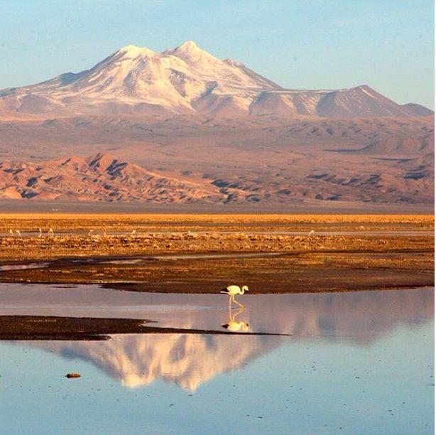 Deserto do Atacama - Chile - Impressionante