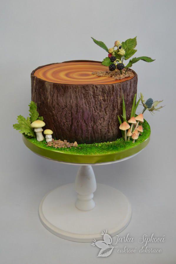 Forest Cake By JarkaSipkova