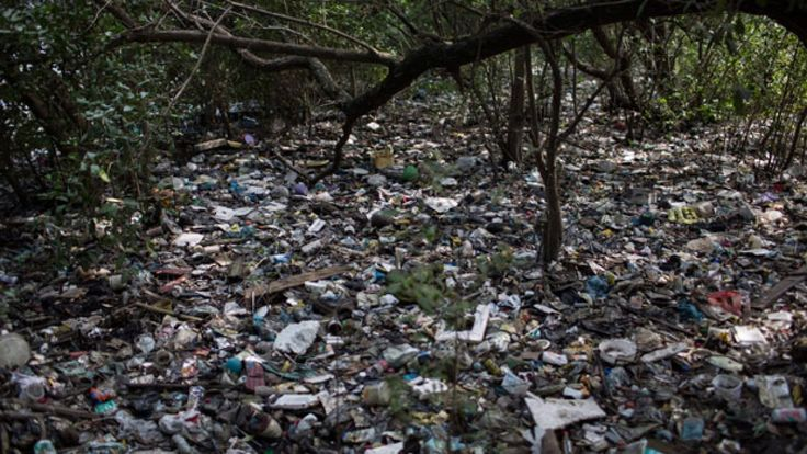 2016 Rio Olympics: Raw sewage, trash will remain in sailing waters ...
