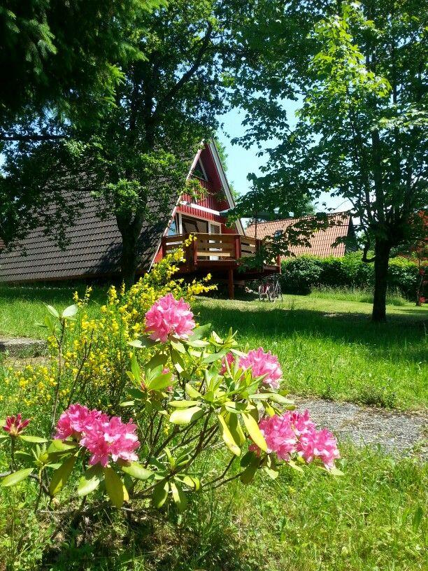 Ferienhaus nahe Chiemsee- wenn alles blüht. Mehr erfahren auf ferienhaus-nahe-chiemsee.de
