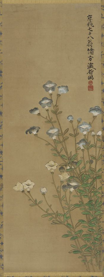 Blue and white flowers on slender stalks | 18th-19th century | Ogata Kenzan (Japanese, 1663-1743) | Edo period | Color on paper | Japan | Gift of Charles Lang Freer | Freer Gallery of Art | F1904.194