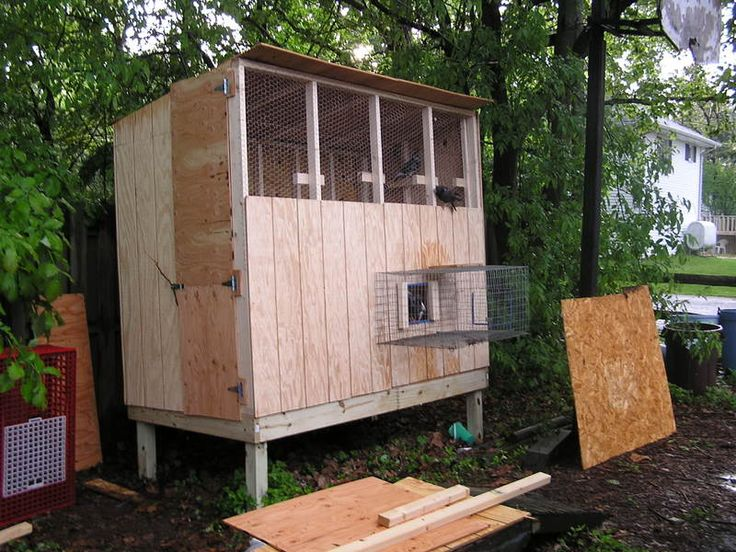 295 best images about on pinterest loft for Pigeon coop ideas