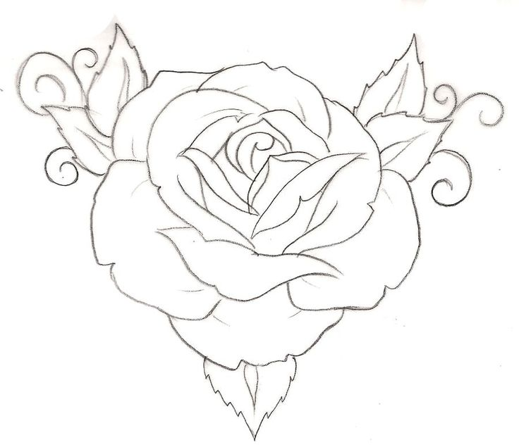 Simple Rose Tattoo Outline: Rose Tattoo 1 By ~Metacharis On DeviantART