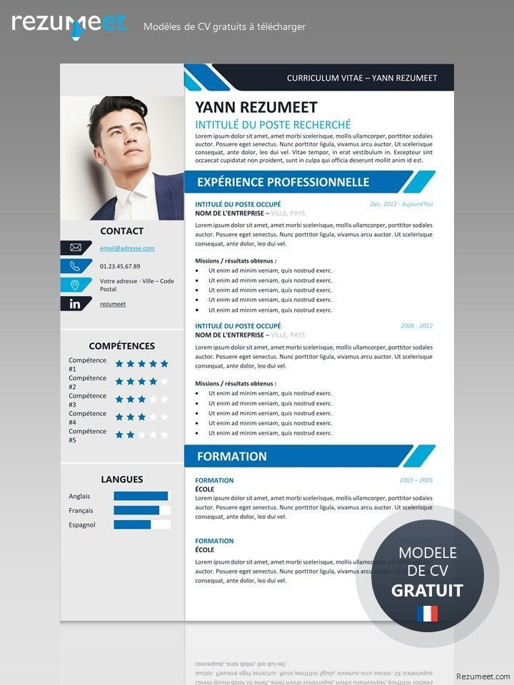 Yanaka Modele Gratuit De Curriculum Vitae Professionnel A Telecharger Resumeexamplessimple Cv Skabelon Skabelon