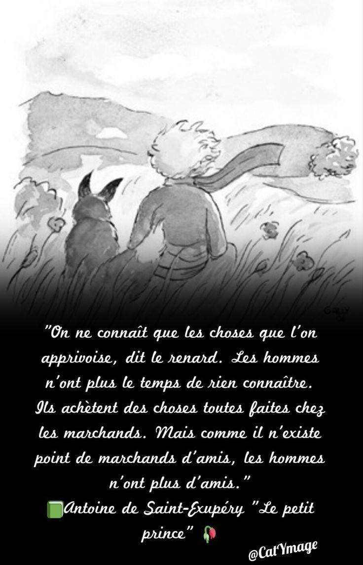 Best 25 le petit prince extrait ideas on pinterest le for Le miroir de l ame