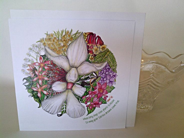 Summer Solstice Greeting Cards (Pack of 6) Christmas Colour Print of Pencil Sketch on Recycled Card 15cm square by TaniaLovesMandalas on Etsy