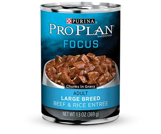 Large Breed Beef & Rice Wet Dog Food FOCUS | Premium Dog Food, Cat Food and Pet Food from Purina® Pro Plan®