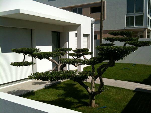 Plus de 1000 id es propos de d coration jardin zen sur pinterest jardins belle et construction - Deco jardin zen exterieur grenoble ...