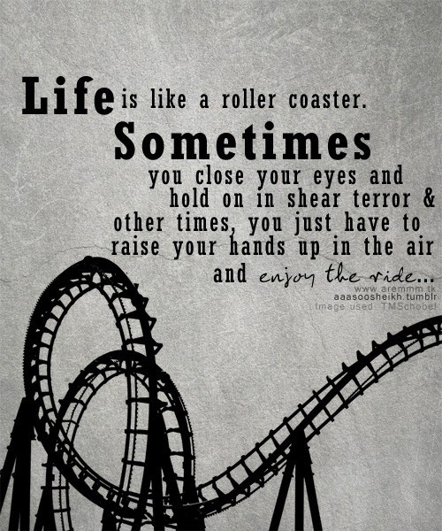 best 25 roller coaster quotes ideas only on pinterest