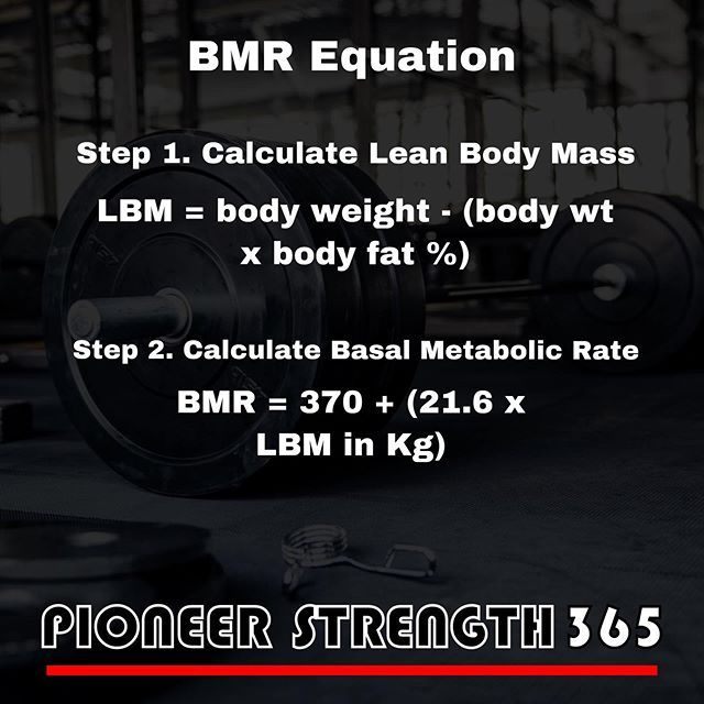 Legionath Dropping Some Knowledge On Bmr Your