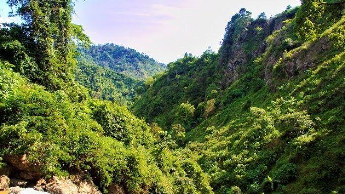 Keren 30 Pemandangan Alam Nan Asri Indahnya Panorama Alam Pegunungan Nan Asri Di Desa Download Jual Lukisan Pemanda Di 2020 Pemandangan Waktu Matahari Taman Alami