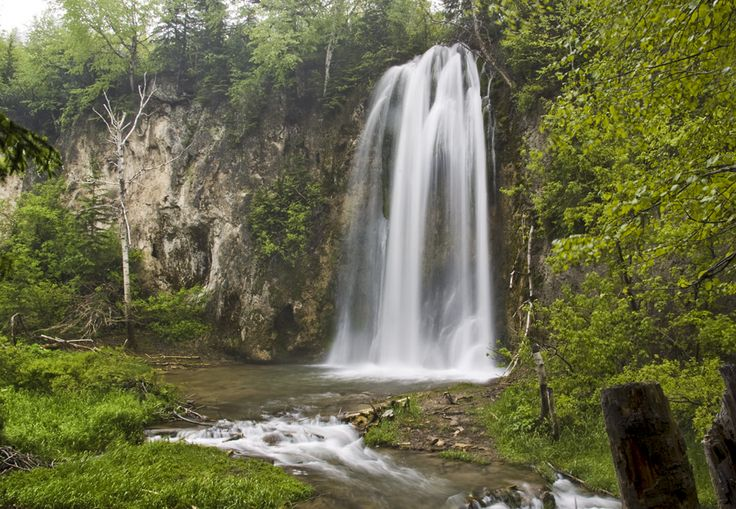 Black Hills | Black Hills Centennial Trail