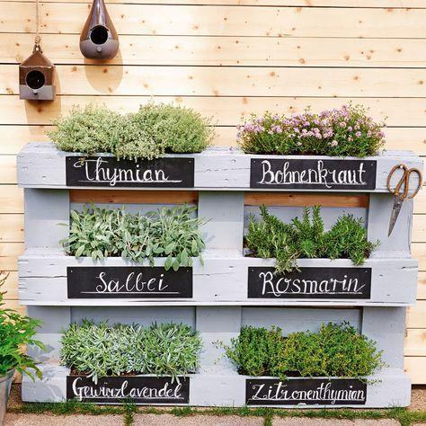 Mini-Gärten auf dem Balkon: So einfach geht's – #…