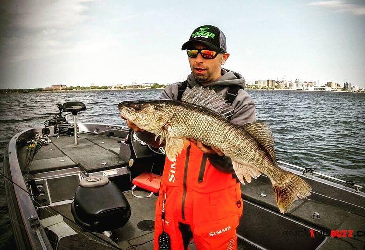 74 best panfish fishing images on pinterest walleye for Seneca lake fishing report