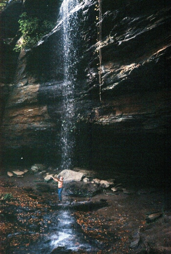 Moore Cove Falls NC The 20 minute easy hike to this falls in Pisgah Forest is as beautiful as the falls itself
