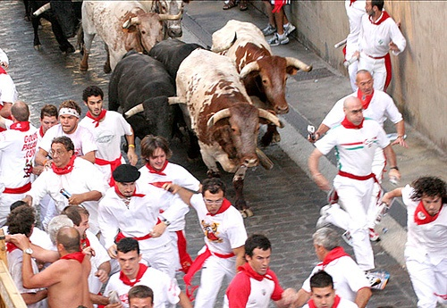 go to the Running of the Bulls in Spain