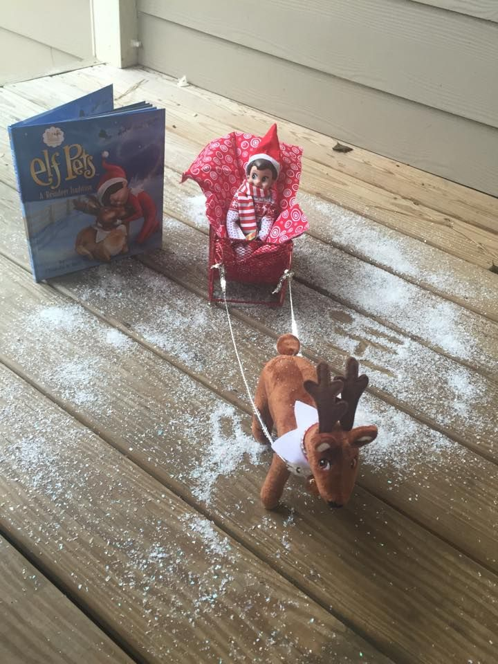 Elf arrives with pet reindeer. Picked this up after Christmas for next year...