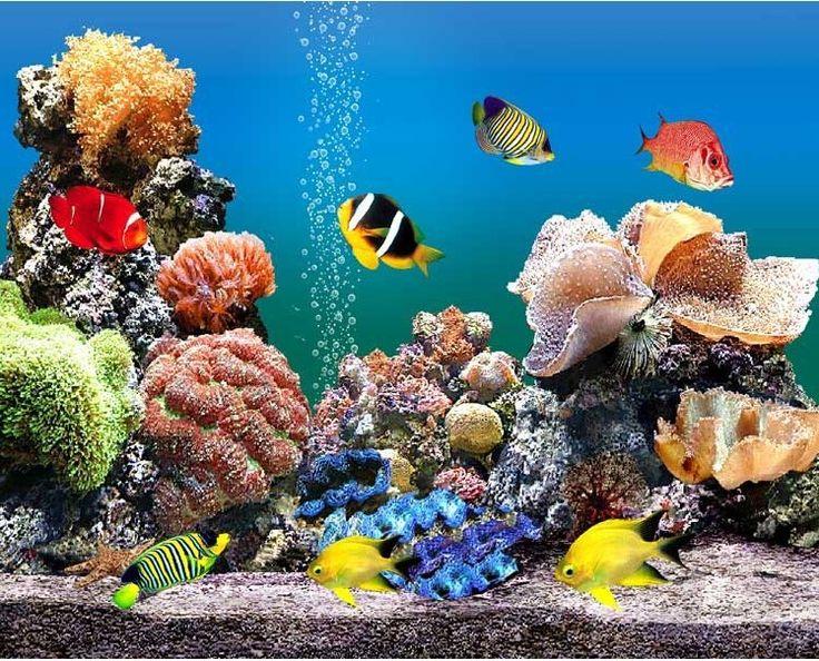 Custom 3d muurschildering behang TV slaapkamer sofa achtergrond Cartoon vis onderwater wereld 3d foto behang voor muren contact papier(China (Mainland))
