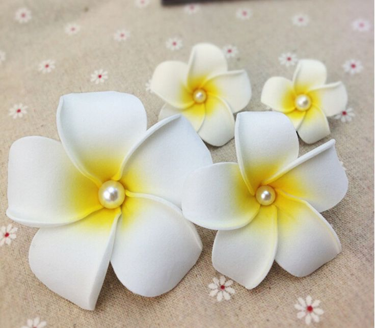 flores de eva passo a passo orquidea - Pesquisa Google