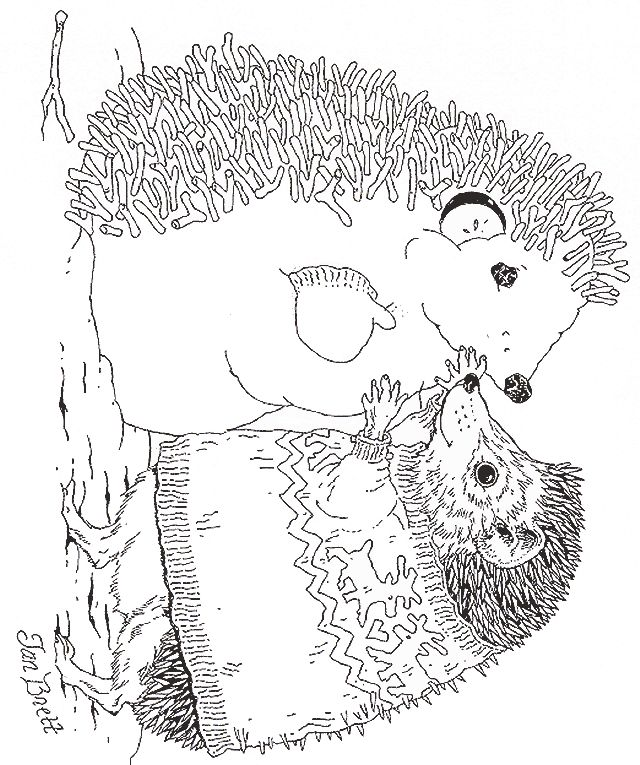 Jan Brett Coloring Pages Hedgie Makes A Hedgehog Snowman
