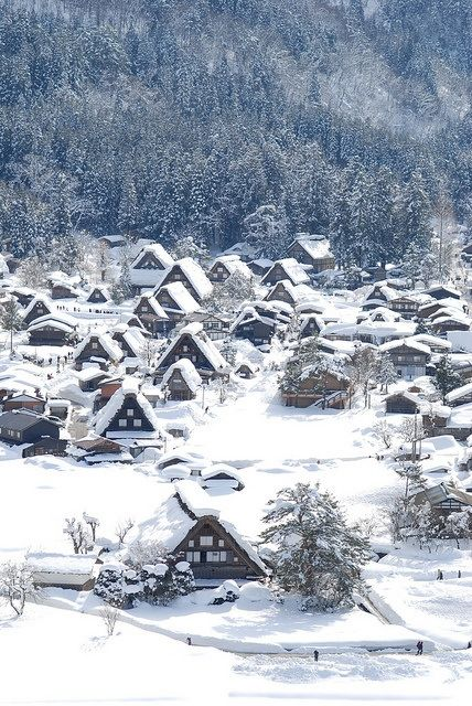 Japan Traditional Folk Houses, Gifu, Japan