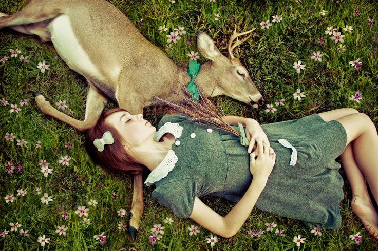 "Kelly Is Nice Photography   www.kellyisnice.com: Featured - ""Oh Deer"" by Kelly Is Nice Photography"