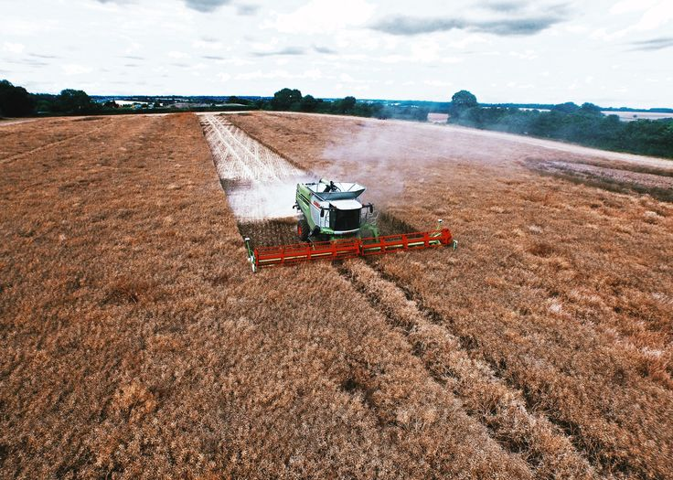 Aerial Filming a combine harvester