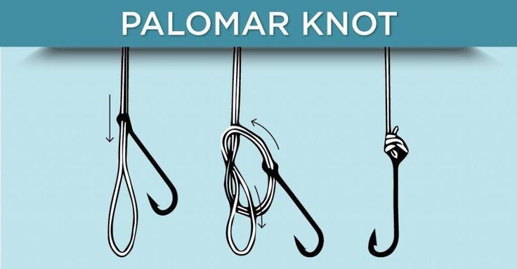 a simple knot essay