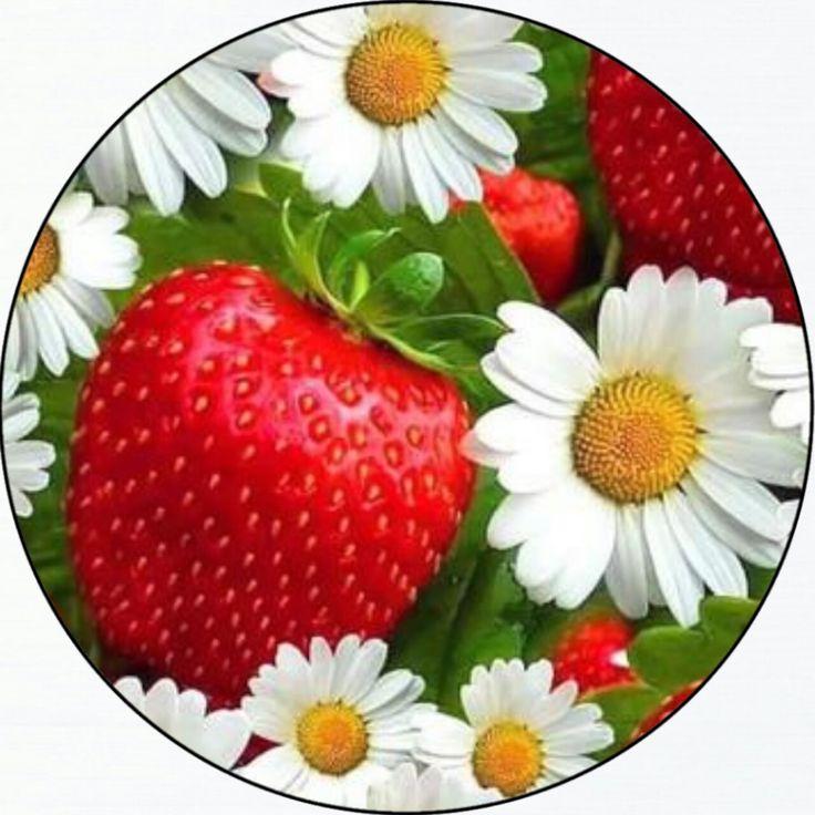 круглая картинка для торта ромашки обморок