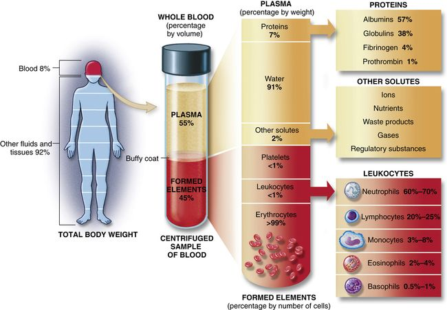 Structure And Function Of The Hematologic System