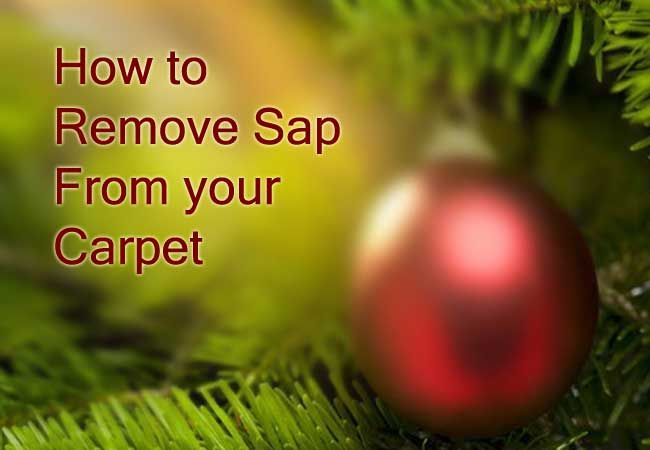 How to remove tree sap from your carpet when the tree comes down.
