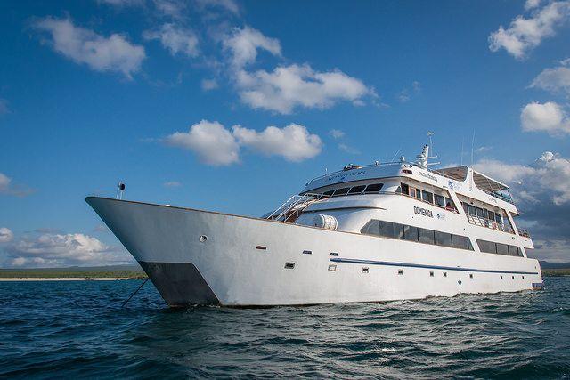 Galapagos Sea Star Cruise