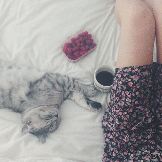 Popołudniowy chill  #summer #coffee #cat #vsco #vscocam #chillout