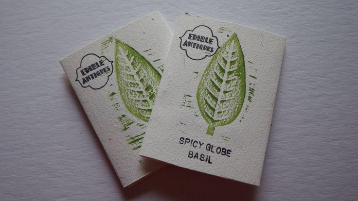 """Spicy Globe"" Basil Seeds"