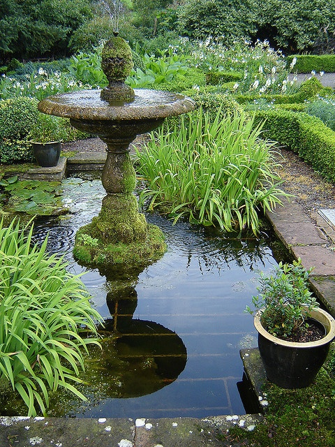 fountain and pond, Dalemain Lake District Historic House Gardens (Photo: vtveen, Flickr) #omnivorus.com